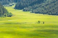 Potatso nationalpark, Shangri-La Arkivbilder