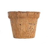 Pote biodegradable de la planta Imagen de archivo libre de regalías