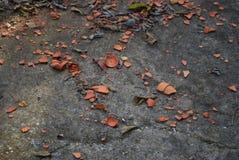 Pote de cerámica roto Fotografía de archivo