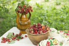 Pote de cerámica viejo por completo de fresas y de arcilla rojas frescas en lona Dieta de las frutas de la comida de Healhty Fotografía de archivo
