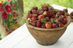 Pote de cerámica viejo por completo de fresas y de arcilla rojas frescas en lona Dieta de las frutas de la comida de Healhty Imagen de archivo libre de regalías