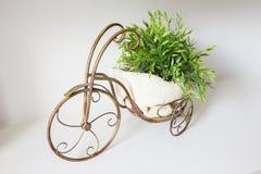 Pote de cobre amarillo de la bicicleta del vintage Foto de archivo libre de regalías