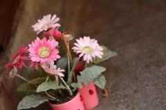 pote de flores Foto de archivo libre de regalías