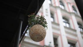 Pote de flores en el fondo de la casa en Riga almacen de video