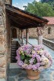 Pote de hortensias en la abadía Románica de San Martín du Can Foto de archivo