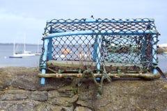 Pote de langosta Imagen de archivo libre de regalías