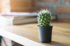 Pote del cactus en el escritorio del trabajo foto de archivo libre de regalías