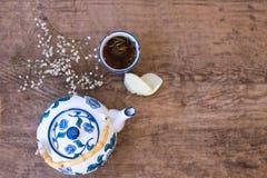 Pote del té y una taza de infusión de hierbas fotografía de archivo