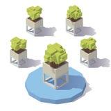 Pote isométrico de la planta del vector libre illustration