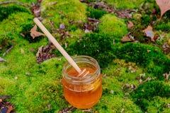 Pote y palillo llenos de la miel con las flores del verano en rústico Foto de archivo