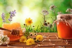 Pote y panal de la miel con el fondo verde de la naturaleza con la flor Fotos de archivo libres de regalías