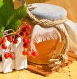 Pote y viburnum de la miel Fotografía de archivo
