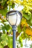 Poteau de lampe électrique dans le jardin photos libres de droits