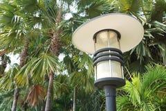 Poteau de lampe électrique dans le jardin de nature photos libres de droits