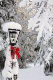 Poteau de lampe en hiver Photographie stock libre de droits