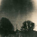 Poteau de nid de cigogne entouré par des arbres la nuit Photo stock