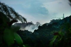 Poteau de puissance dans la jungle, Malaisie photos stock