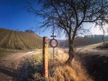 Poteau de signalisation et vue fantastique aux vignobles devant le bleu Images stock