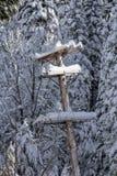 Poteau de téléphone couvert par neige image libre de droits