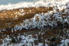 Poteau en bois congelé Images libres de droits