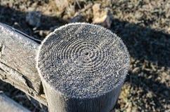 Poteau en bois congelé Image stock