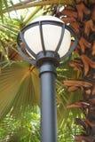 Poteau ?lectrique de lampe de cercle dans le jardin de nature images libres de droits