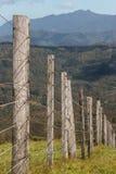 Poteaux en bois de barrière à la péninsule de Coromandel Photos stock