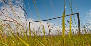 Poteaux en bois de but sur le terrain de football envahi en Afrique du Sud image stock