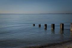 Poteaux en bois quand la marée est haute photos stock