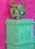 Potenciômetro & carrinho coloridos de flor Fotos de Stock Royalty Free