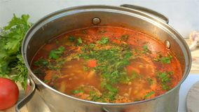 Potenciômetro com uma borsch apetitosa e saboroso caseiro Sopa vegetal das beterrabas vermelhas, fervendo em uma caçarola video estoque