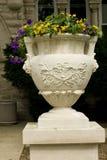 Potenciômetro de flor Fotos de Stock Royalty Free