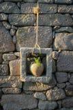Potenciômetro de flor antigo na parede de pedra fotos de stock