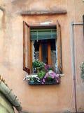 Potenciômetro de flor colorido na janela de Veneza, Itália Imagens de Stock Royalty Free