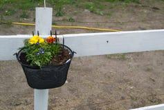 Potenciômetro de flor com flores em uma cerca Fotografia de Stock Royalty Free