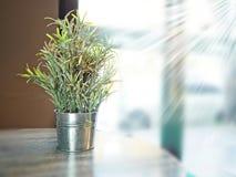 Potenciômetro de vidro no café Fotografia de Stock