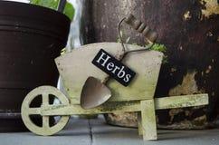 Potenciômetro do carrinho de mão no jardim fotos de stock