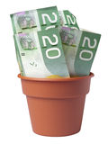Potenciômetro do dinheiro Foto de Stock