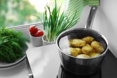 Potenciômetro do metal com a batata no fogão de indução imagem de stock