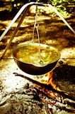 Potenci?metro quente da sopa na floresta foto de stock royalty free