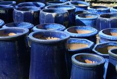 Potenciômetros azuis 2 do jardim imagens de stock