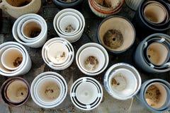 Potenciômetros da porcelana nas fileiras fotos de stock royalty free