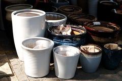 Potenciômetros da porcelana nas fileiras fotos de stock