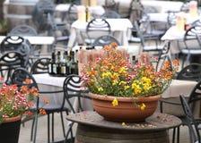 potenciômetros das flores nas tabelas na barra alfresco Fotos de Stock Royalty Free