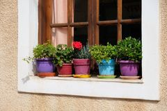 Potenciômetros de flor coloridos no peitoril da janela, Galaxidi, Grécia Fotos de Stock Royalty Free