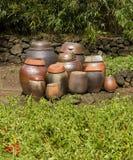 Potenciômetros de Kimchi da argila Foto de Stock