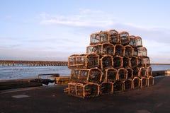 Potenciômetros de lagosta Imagens de Stock Royalty Free