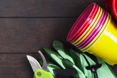 Potenciômetros plásticos coloridos, luvas ferramentas para jardinar e plântula no fundo de madeira fotos de stock royalty free