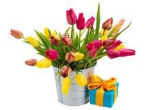 Potenciômetro com as tulipas cor-de-rosa e amarelas com caixa de presente foto de stock