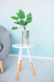 Potenciômetro com uma flor Monstera na mesa de centro branca fotos de stock